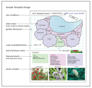 Native plants - Sample Template Design (Illustrations by Tom Maxfield; Designs by Kate Brandes)
