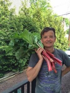 Growing rhubarb (Photo by Viana Boenzli)