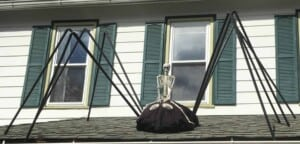 Garden spiders - Large spider seen in the ville around October 31st (Photo by Erich Boenzli)