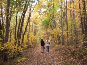 Walking - Appalachian Trail (Photo by Erich Boenzli)