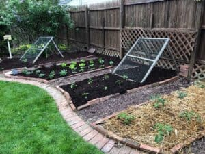 Vegetable trellis Mesh Ramps - Ready, set, grow! (Photo by Erich Boenzli)