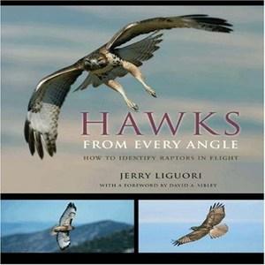 HawksFromEveryAngleBook