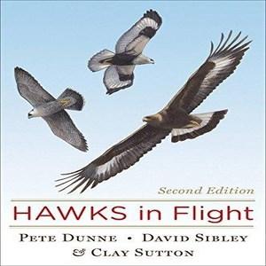 HawksInFlightBook