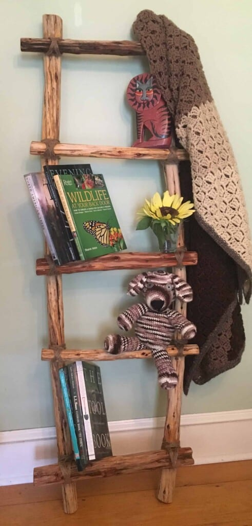 Ladder - Beautiful indoor home decor (Photo by Viana Boenzli)