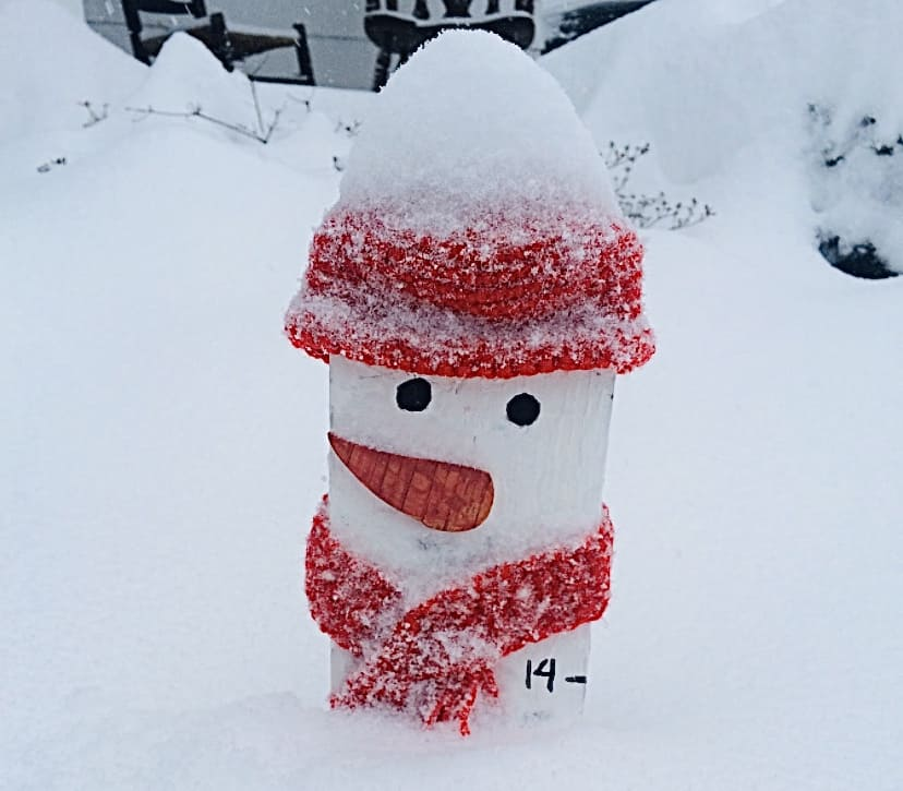 Snowman Measuring Stick - Over a foot of snow today! (Photo by Viana Boenzli)