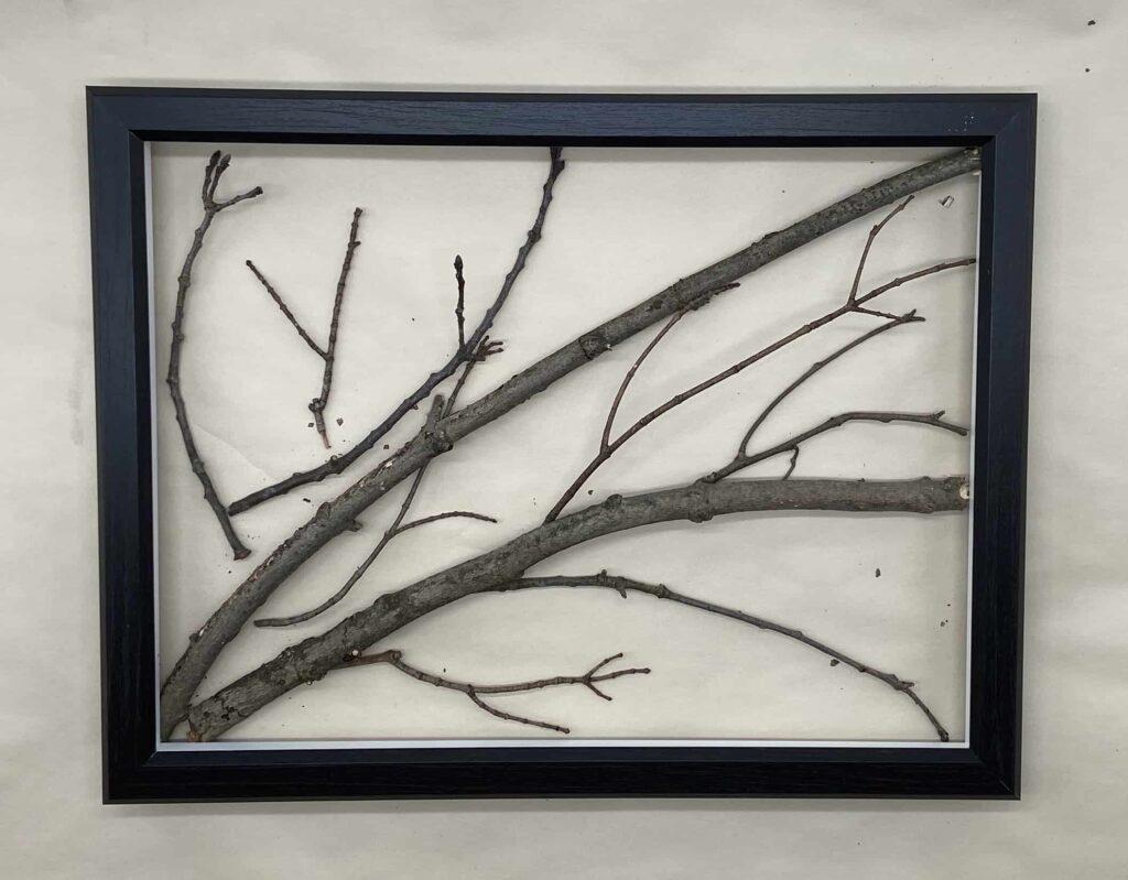 Tree Branch Art - (Photo by Viana Boenzli)