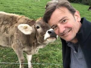 About Erich - Say hi to my Swiss buddy, Braunvieh (Parda alpina)