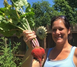 Garden Vegetables - Harvesting one of our beets (Photo by Erich Boenzli)