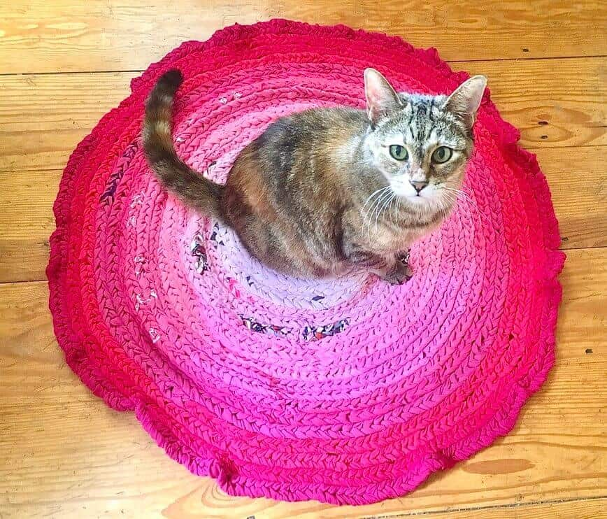 Ombre Throw T-Shirt Rug - Pearly loves it too! (Photo by Viana Boenzli)