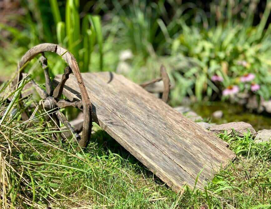 Garden Decor - cart (Photo by Viana Boenzli)