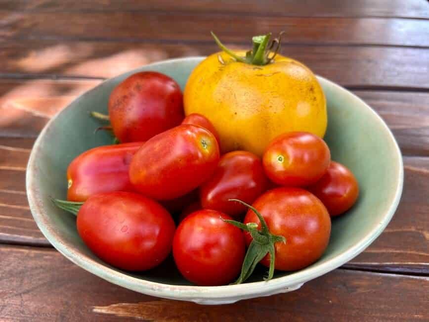 Tomato Basil Mozzarella Pasta (Photo by Erich Boenzli)