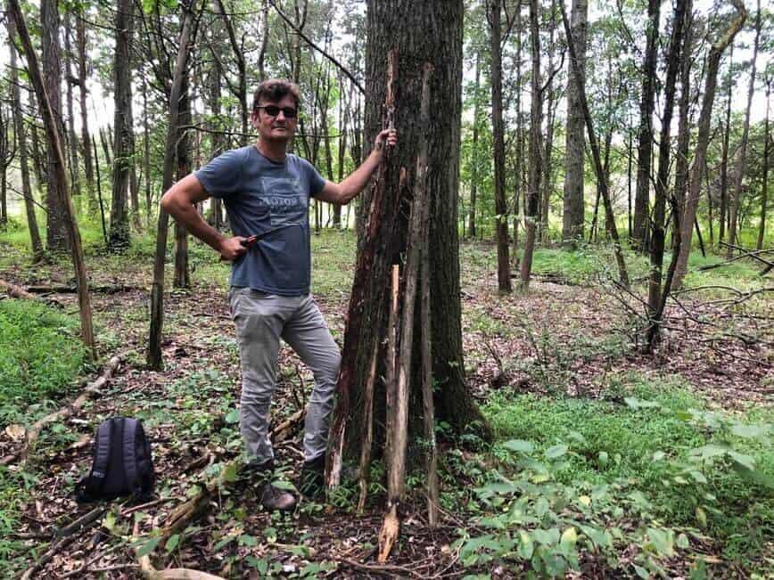 DIY Ladder - Erich the cedar branch hunter (Photo by Viana Boenzli)