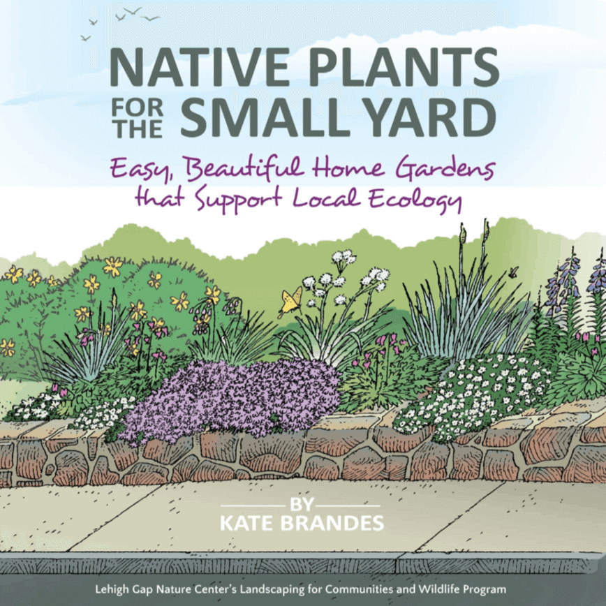 Native Plants for the Small Yard (Illustrations by Tom Maxfield; Designs by Kate Brandes)