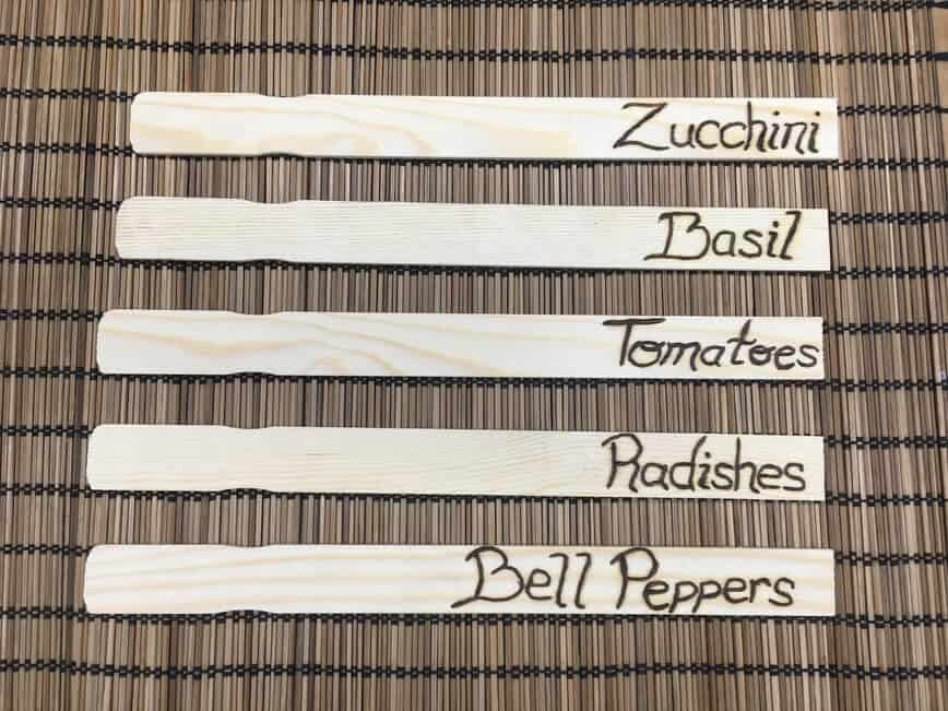 DIY Plant Markers - Names wood burned onto sticks (Photo by Viana Boenzli)