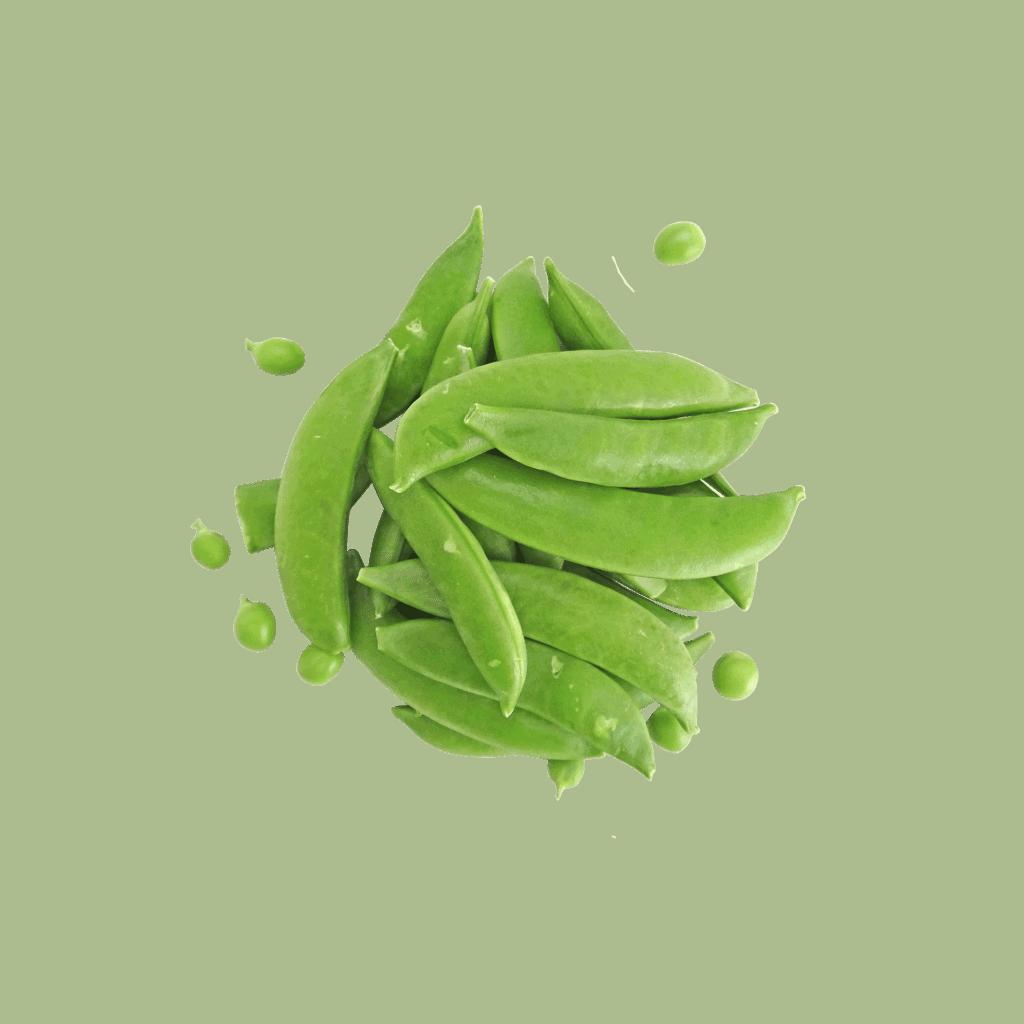 How to grow salad greens - Sugar Snap Peas