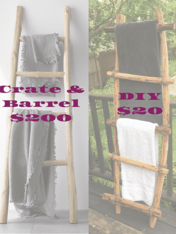 DIY Ladder - DIY Crate & Barrel ladder for a fraction of the price! (Photo by Viana Boenzli)