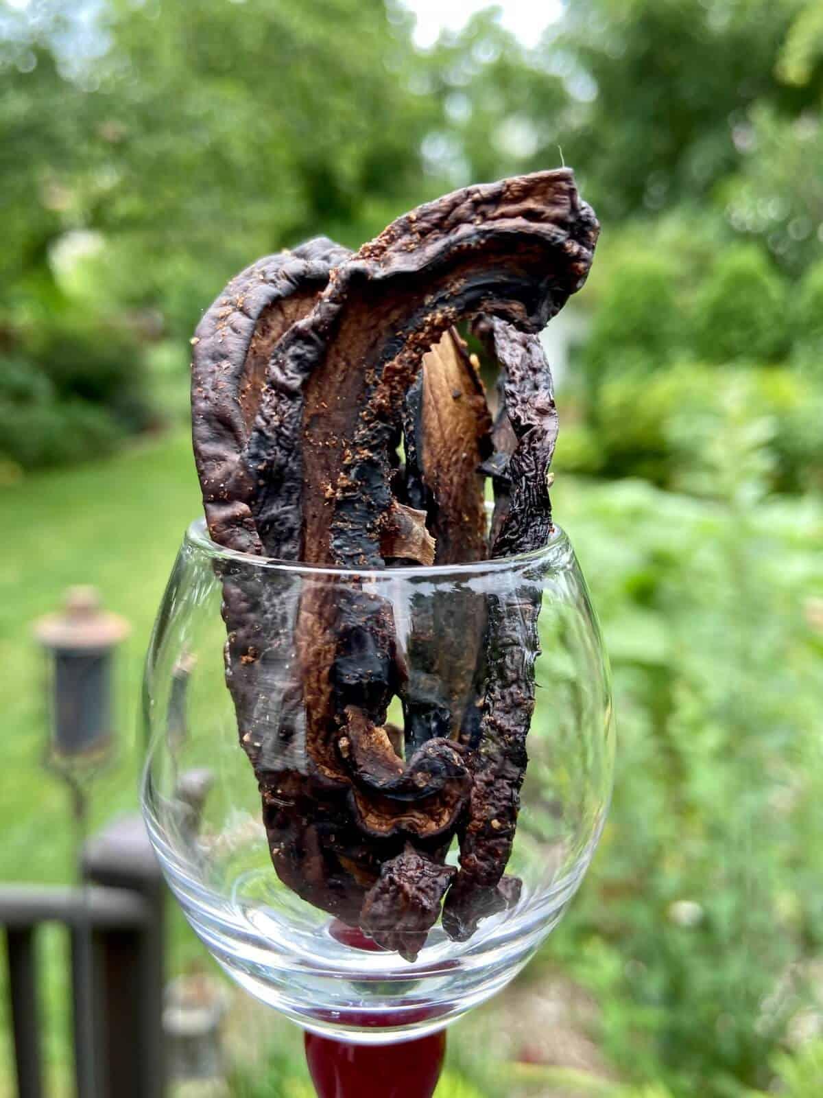 Mushroom Jerky Recipe - Portobello Mushroom Jerky (Photo by Erich Boenzli)